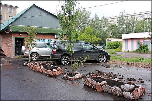 В Красноярске орудуют садоводы-партизаны»
